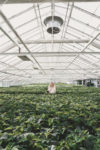 Girl standing in greenhouse wearing a Carl Edmond Watch